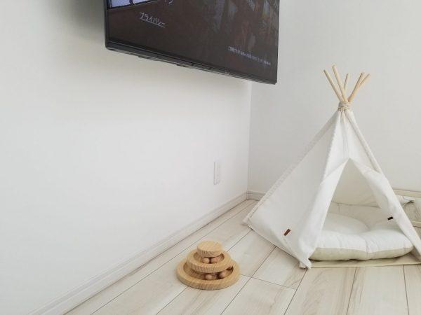 猫のお部屋の写真