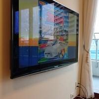 東京都マンションにて 壁掛けテレビ 隠蔽配線 のサムネイル